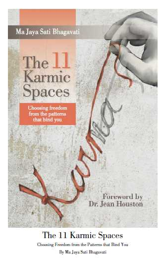The 11 Karmic Spaces book cover